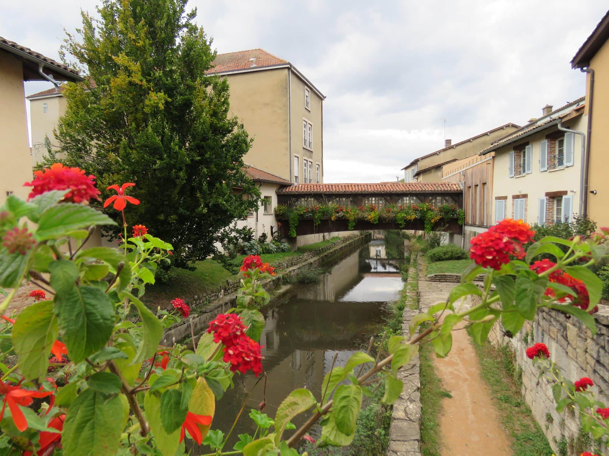 La Chalaronne à Châtillon-sur-Chalaronne